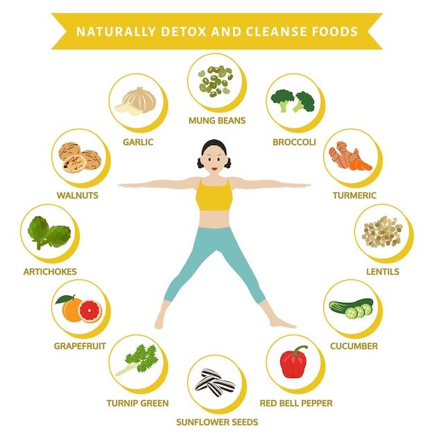 Natuurlijk detox en reinig voedsel, info grafisch plat voedsel, Premium Vector