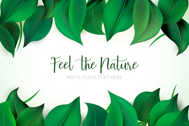 Natuurlijke achtergrond met groene bladeren Gratis Vector