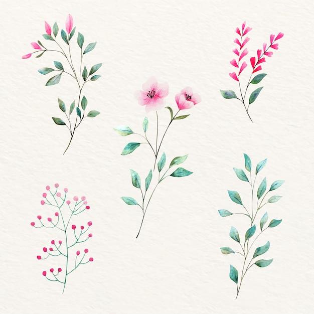 Natuurlijke aquarel bladeren en bloemen Gratis Vector