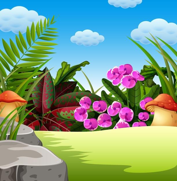 Natuurlijke bosconditie Premium Vector