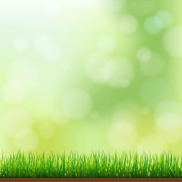 Natuurlijke groene grasachtergrond met nadruk en bokeh Premium Vector