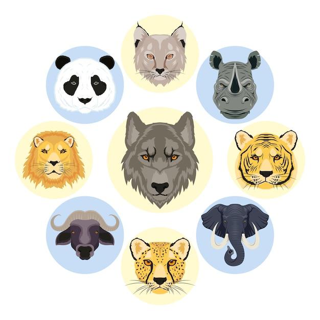 Negen wilde dieren leiden faunakarakters Premium Vector