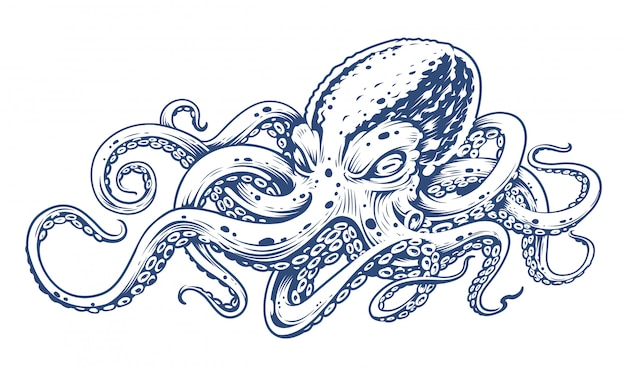 Octopus vintage gravure stijl vectorillustratie van octopus. Premium Vector