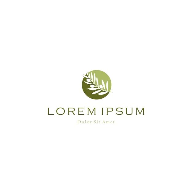 Olijfolie boomtak logo vector pictogram illustratie Premium Vector