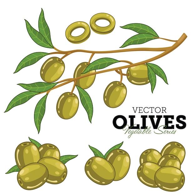 Olijven met bladeren, Premium Vector