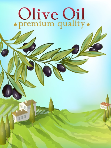 Olive oil premium illustration voor verpakking Gratis Vector