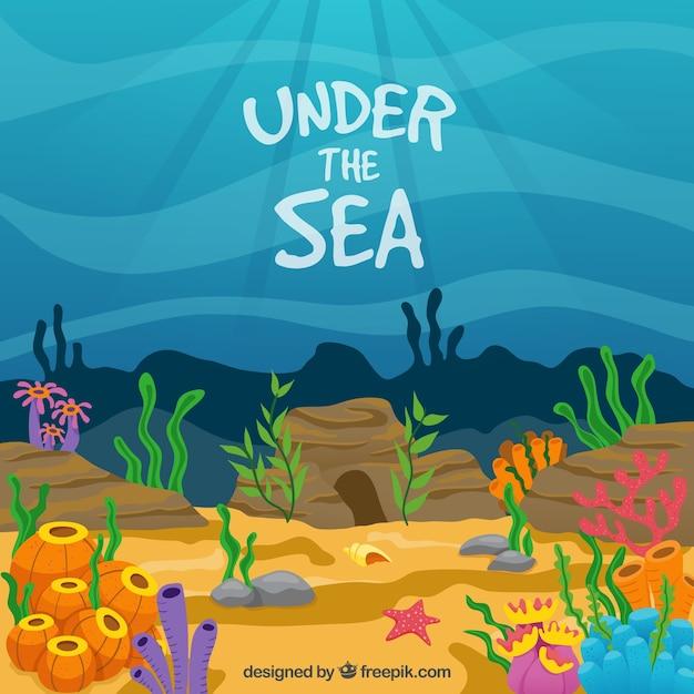 Onder de zee met gekleurde achtergrond zeewieren Gratis Vector