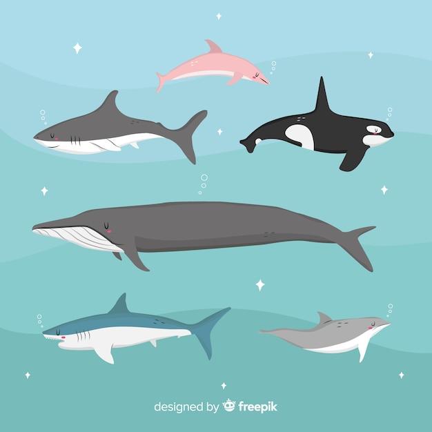 Onderwaterdierenverzameling in kinderstijl Gratis Vector