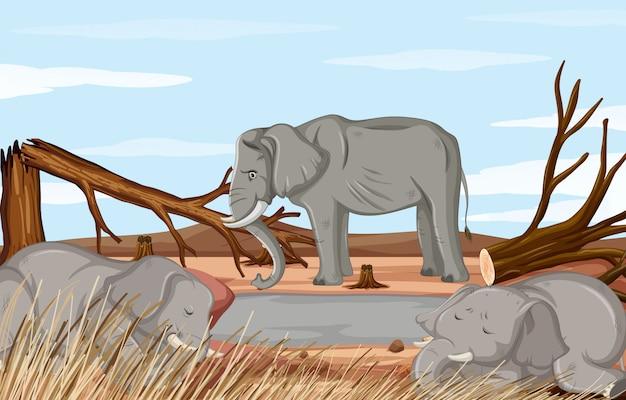 Ontbossing scène met stervende olifant Gratis Vector