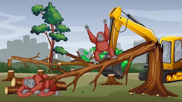 Ontbossingscène met tractor scherpe bomen Gratis Vector