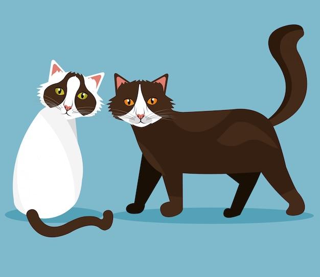 Ontwerp met huisdierenkat. Gratis Vector