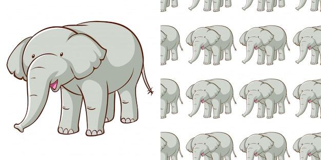 Ontwerp met naadloze patroon grijze olifant Gratis Vector