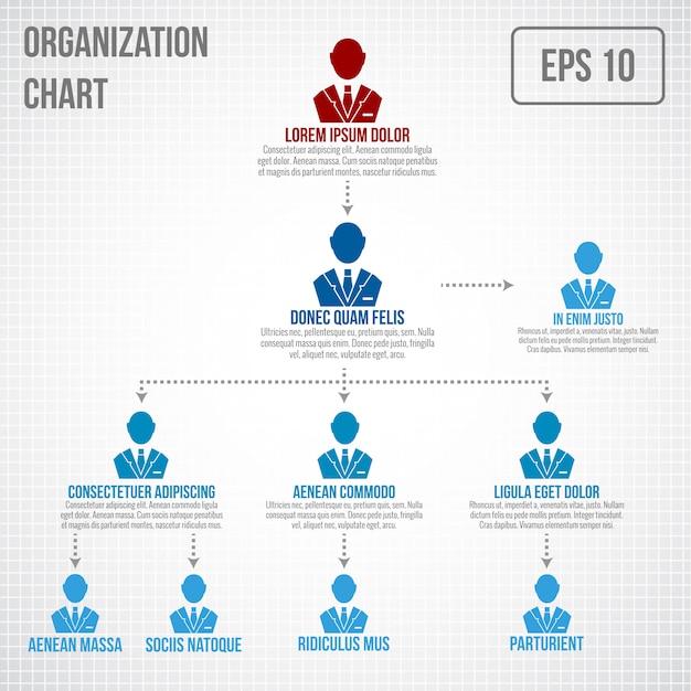 Organigram infographic sjabloon Gratis Vector