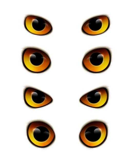 Owl eyes realistic collection Gratis Vector
