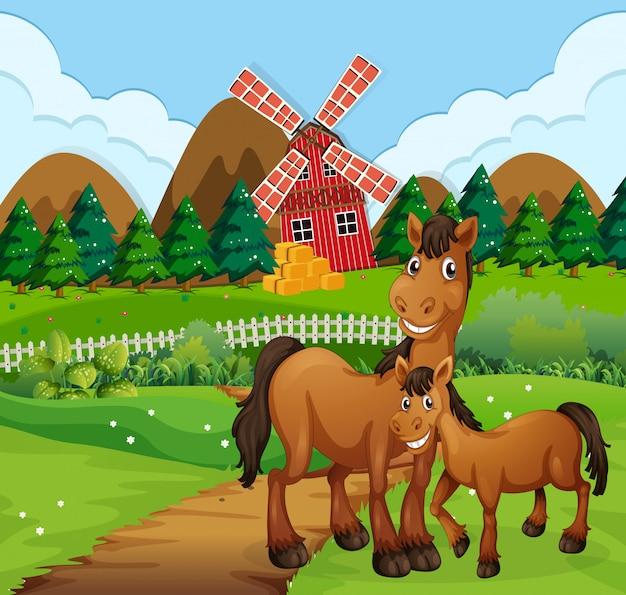 Paarden in boerderij scène Gratis Vector