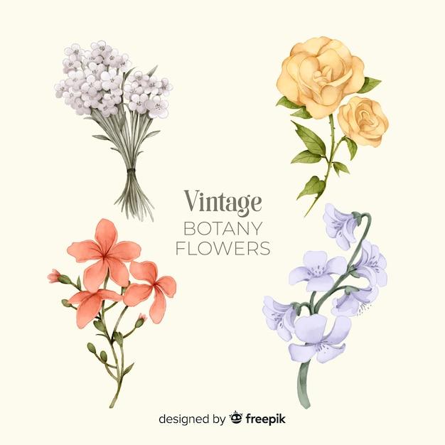 Pack van hand getrokken bloemen Gratis Vector
