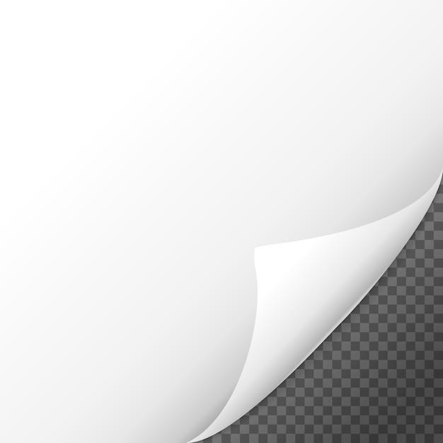 Paginakrul schaduweffect op blanco vel papier Premium Vector