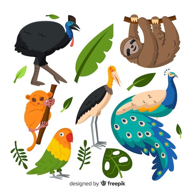 Pak van platte tropische dieren Gratis Vector