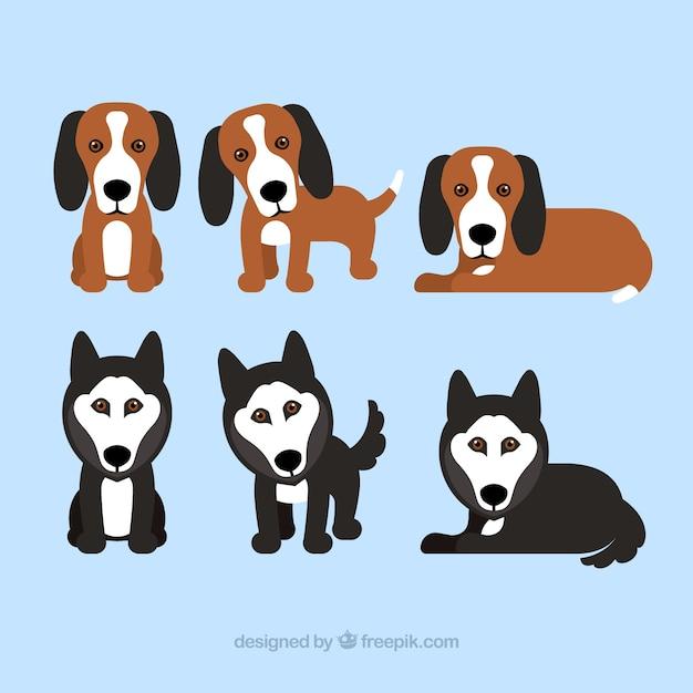 Pak van zes puppies Gratis Vector