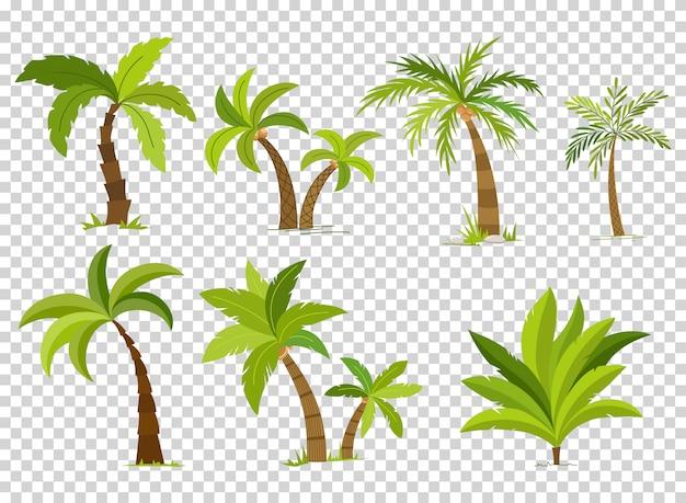 Palmbomen instellen Premium Vector