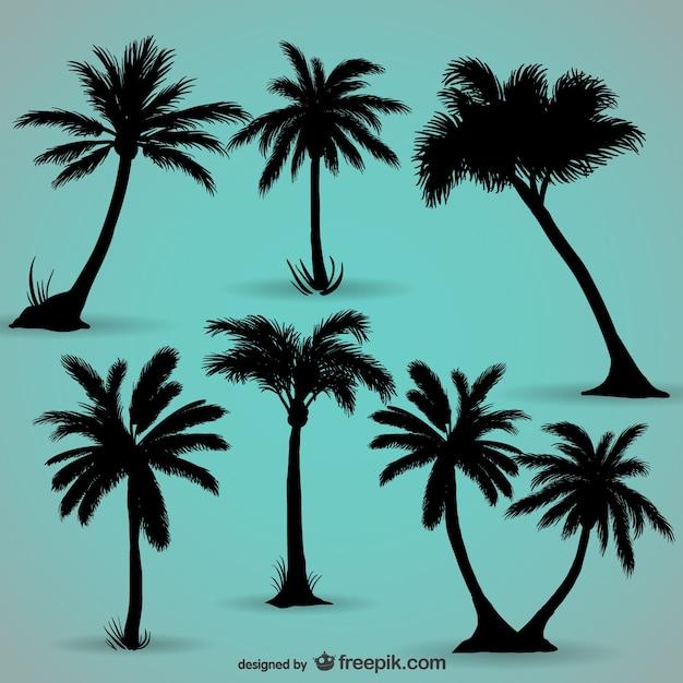 Palmbomen zwarte silhouetten Gratis Vector