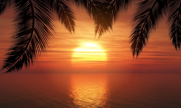 Palmen tegen zonsonderganghemel Gratis Vector