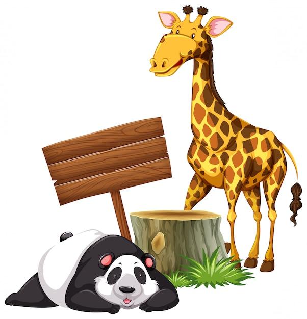 Panda en giraffe door het bord Gratis Vector
