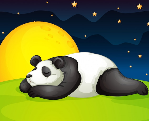 Panda rust in de nacht Gratis Vector