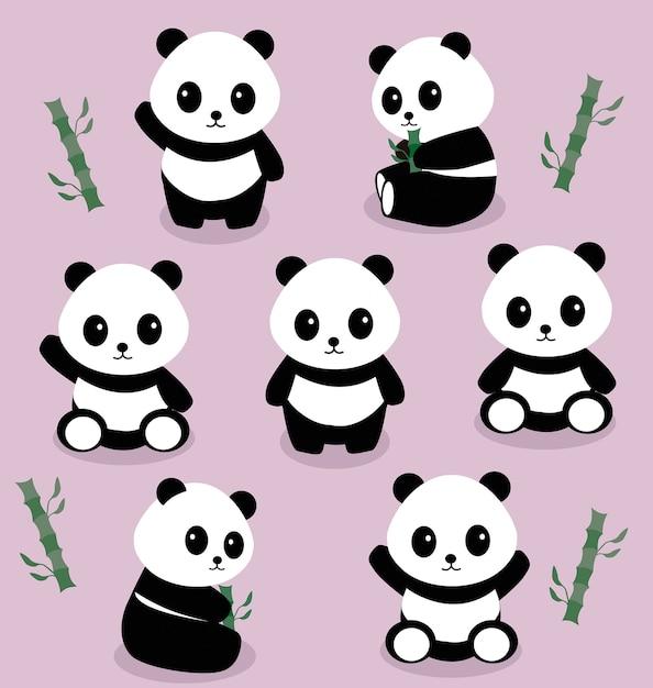 Pandas Premium Vector