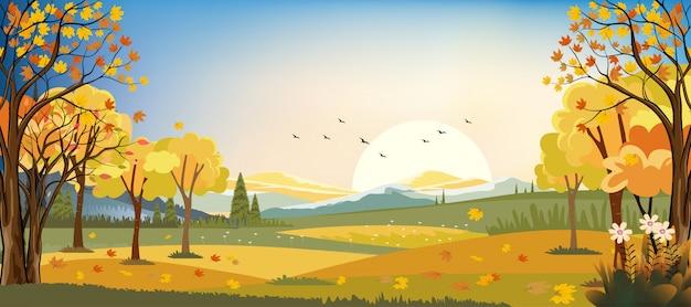 Panoramalandschappen van het gebied van het de herfstlandbouwbedrijf met esdoornbladeren die van bomen vallen, dalingsseizoen in avond. Premium Vector
