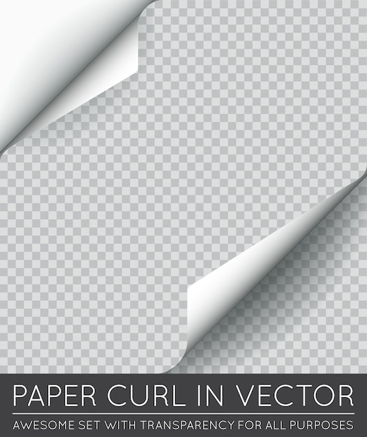 Papier paginakrul met schaduw geïsoleerd. Premium Vector