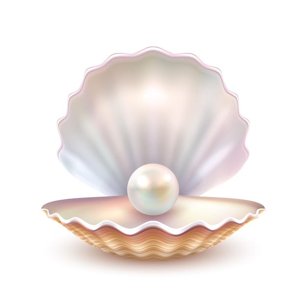 Pearl shell realistische close-up afbeelding Gratis Vector