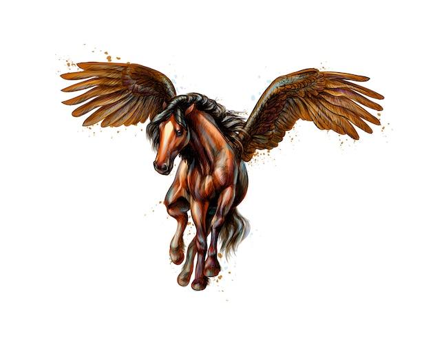 Pegasus mythisch gevleugeld paard uit splash van aquarellen. hand getrokken schets. illustratie van verven Premium Vector