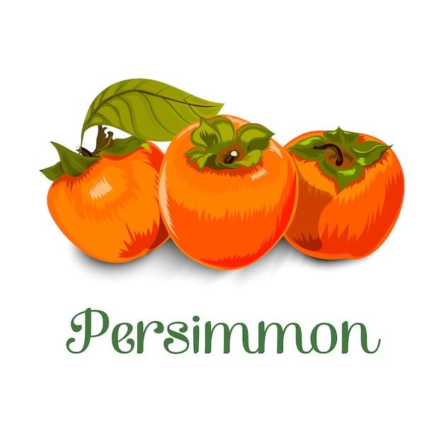 Persimmon Premium Vector