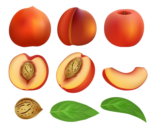 Perzik plakjes fruit blad mockup set Premium Vector