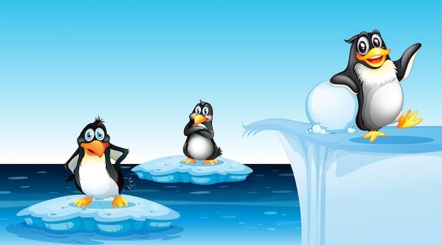 Pinguïn in arctisch landschap Premium Vector