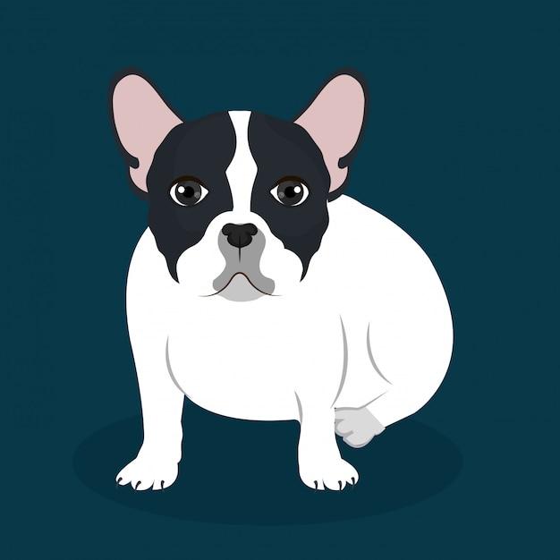 Platte bulldog illustratie Gratis Vector