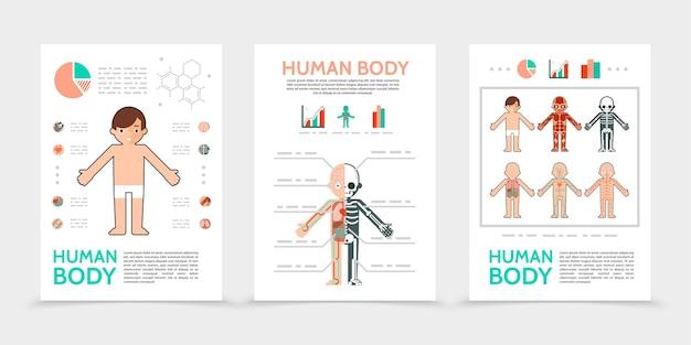 Platte menselijke lichaamsposters Gratis Vector