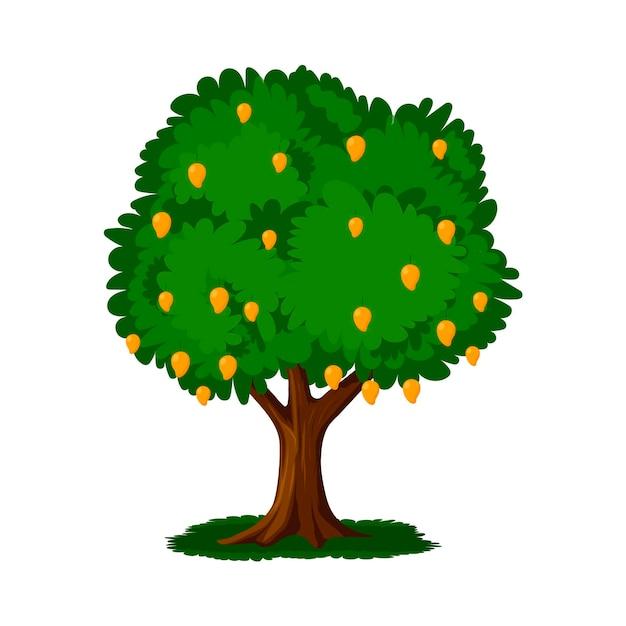 Platte ontwerp mangoboom met fruit Premium Vector