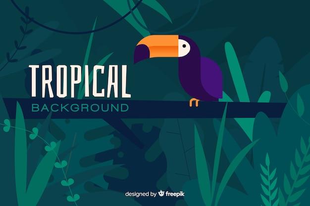 Platte tropische achtergrond met exotische papegaai Gratis Vector