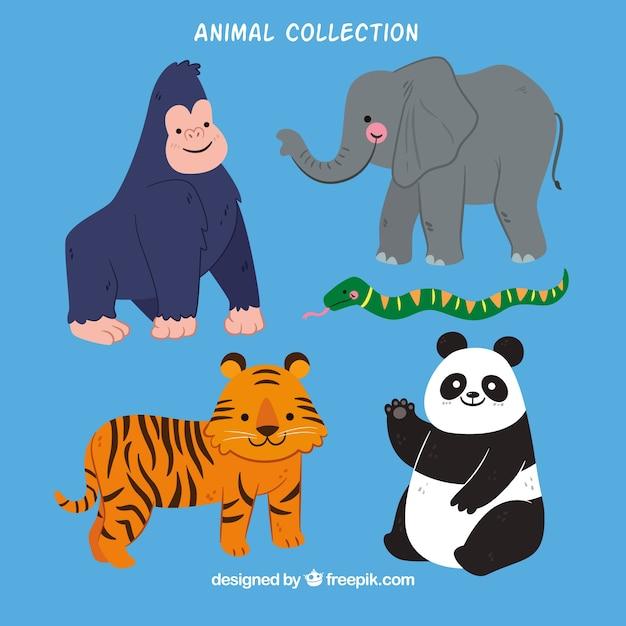 Platte verzameling van jungle dieren Gratis Vector