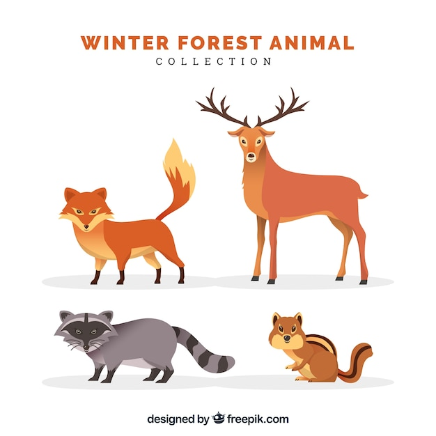 Platte winter dieren collectie Gratis Vector