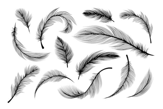 Pluizige veren, silhouetten van vliegende pluimveren Gratis Vector