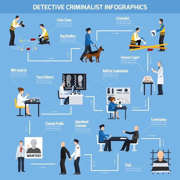 Politie-experts vlakke stijl infographics Premium Vector