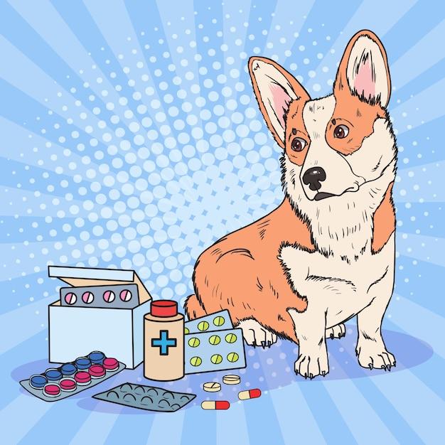Pop art corgi dog met medicatie pillen en tabletten Premium Vector