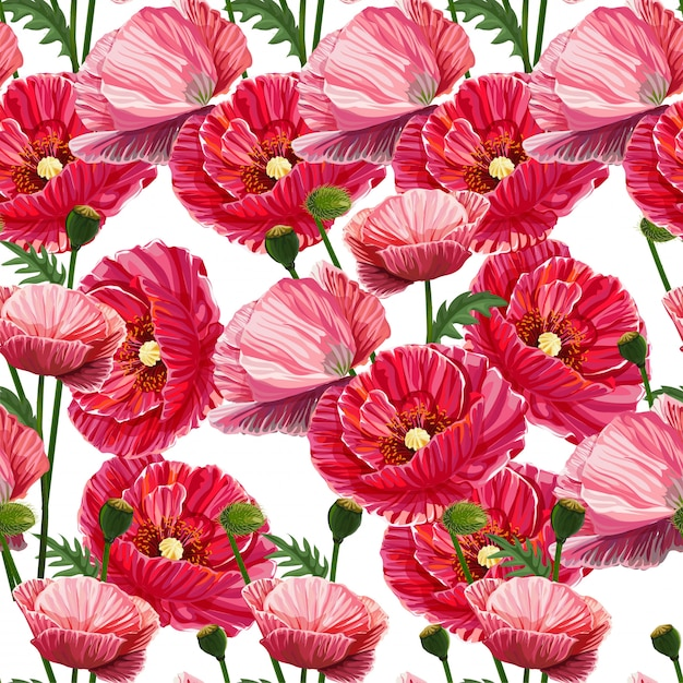 Poppy naadloze bloemenpatroon Premium Vector