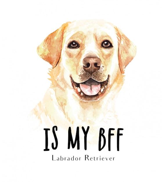 Portret labrador retriever voor afdrukken Premium Vector