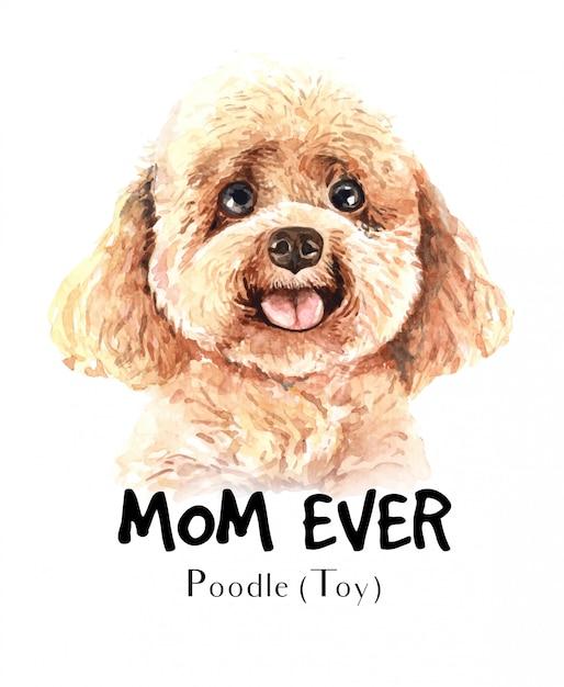 Portret poedel toy voor afdrukken Premium Vector