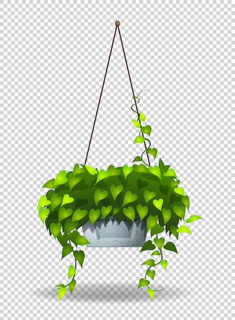 Potplant hangen aan de muur Gratis Vector
