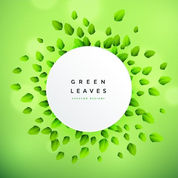 Prachtige groene bladeren frame achtergrond Gratis Vector